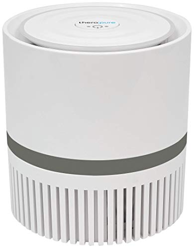 Envion Therapure TPP100 Compact 360 HEPA Type Air Purifier, 2-Speed Grey, 25 Sq Ft Capacity   Removes Odors, Smoke, Mold, Pet Dander, Bacteria And More!
