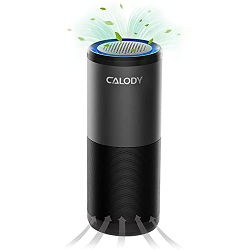 CALODY Portable Air Purifier, Car Air Purifier with H13 True HEPA Filter for Allergies, Smoke, Dust and Odor Eliminator, HEPA Air Purifier for Home Bedroom Office Car