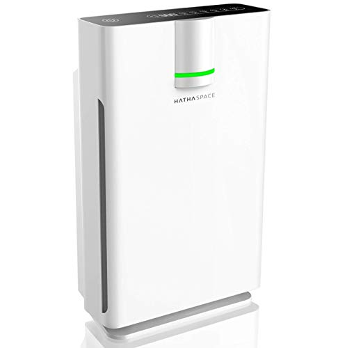 Hathaspace Smart True HEPA Air Purifier 2.0 for Extra-Large Rooms with Medical Grade H13 HEPA Filter, 5-in-1 Home Air Cleaner for Allergies, Asthma, Pets, Odors, Smokers, 1500+ Sq Ft Coverage - HSP002