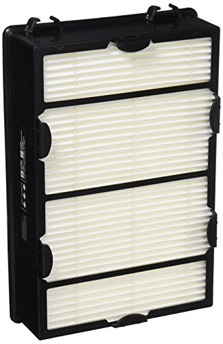 Holmes True HEPA Filter with Enhanced Mold Fighting Power, 2-Pack, White, 2 Count