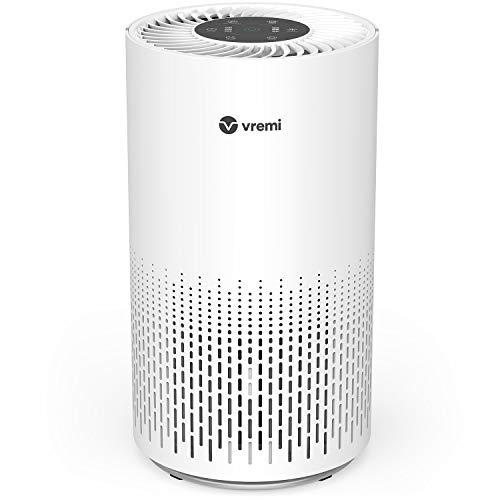 Vremi Premium True HEPA Air Purifier for Large Rooms - Removes 99.97% of Airborne Particles with H13, Activated Carbon and 3-Stage Filtration - Have A Great Air Day